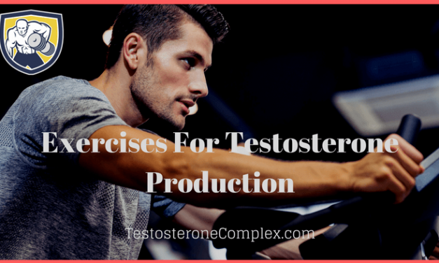 Exercises For Testosterone Production